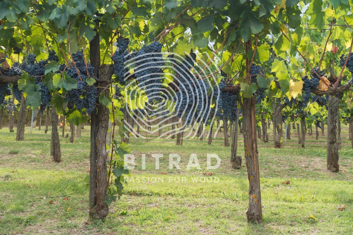 Postes agricolas de madera. PPHU Bitrad